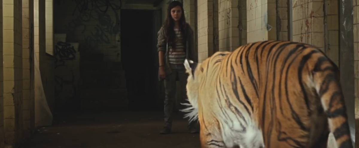 Estrella Lara facing down a tiger in Tigers Are Not Afraid
