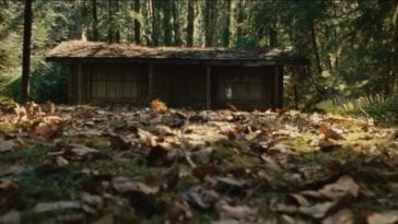 A cabin in the woods