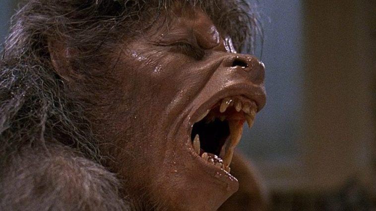 An American Werewolf in London transformation.