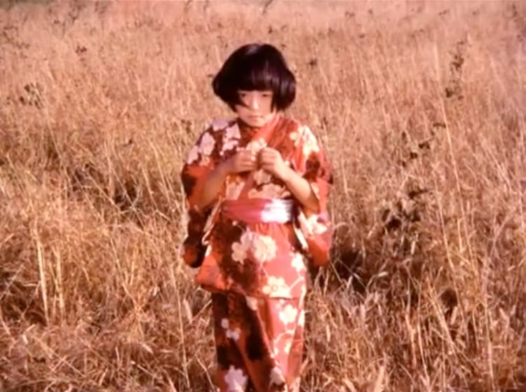 Young Japanese boy in a field
