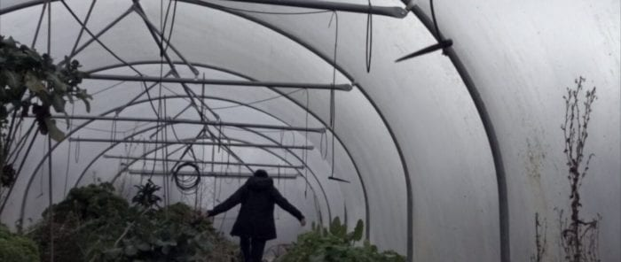 Inside of a greenhouse tent with hanging plants, a woman walks along a narrow path with her arms outstretched to keep balance.