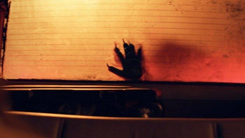 A paw seen through a car window