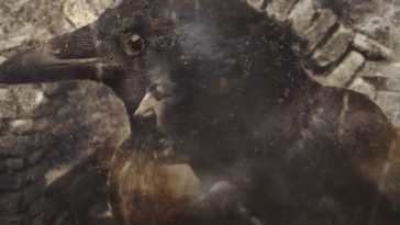 Artistic depiction of a woman shapeshifting into a crow, with a woman's straining face overlaid onto the head and body of the crow.