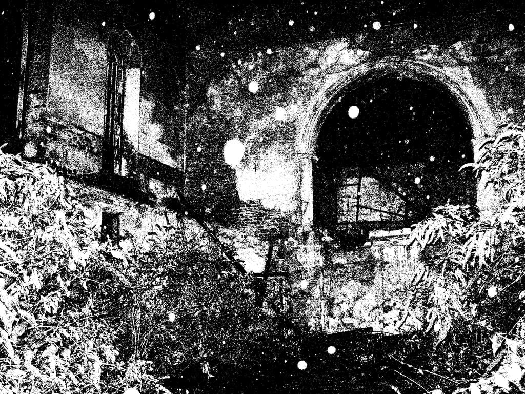The inside of an abandonded church, shot in black and white. It is over grown and white dust falls in front of the camera.