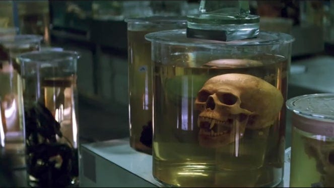 A vampire skull in a jar in a room with countless other jars full of numerous things.