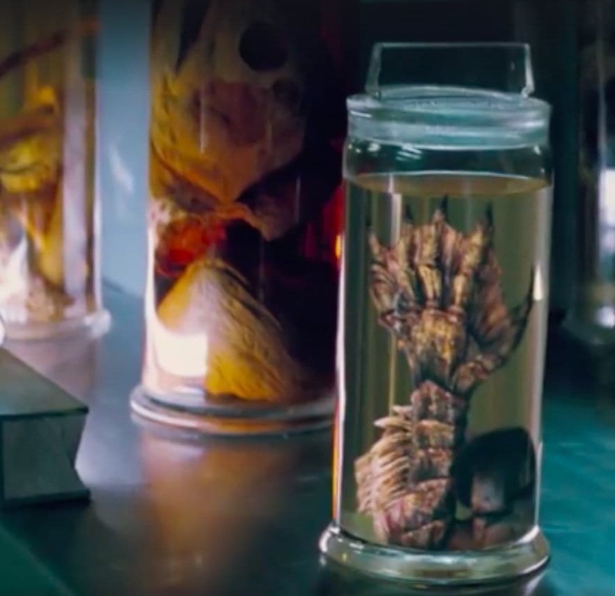 A Gill-man claw in a jar that's resting on a table with other jars surrounding it.
