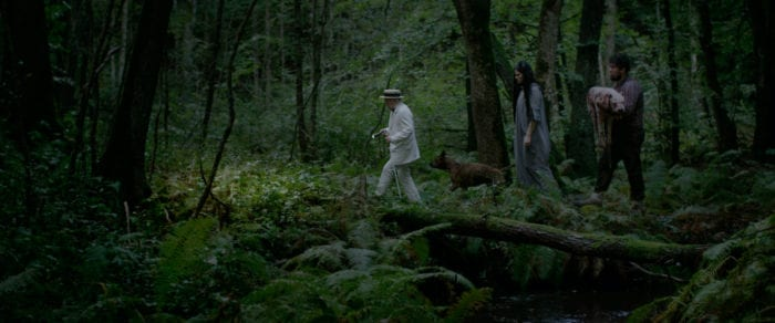 Mog, Cherry, and Sampo walk through the woods
