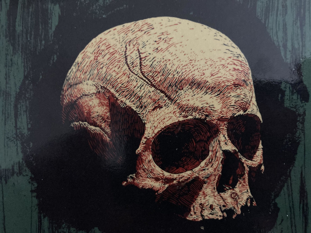 Cover for Succulent Prey features a close up of a human skull