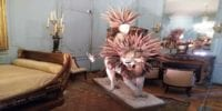Hybrid lion with a feathered mane