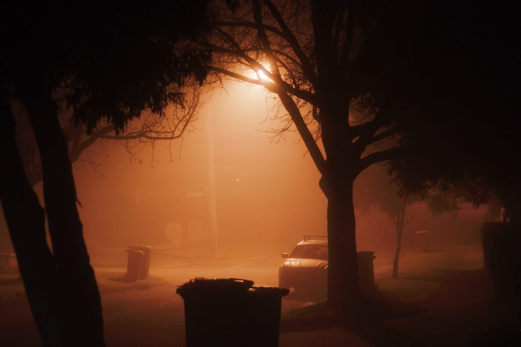 A foggy tree-lined street at night.