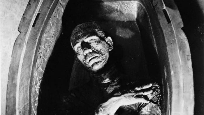 The mummy in his coffin