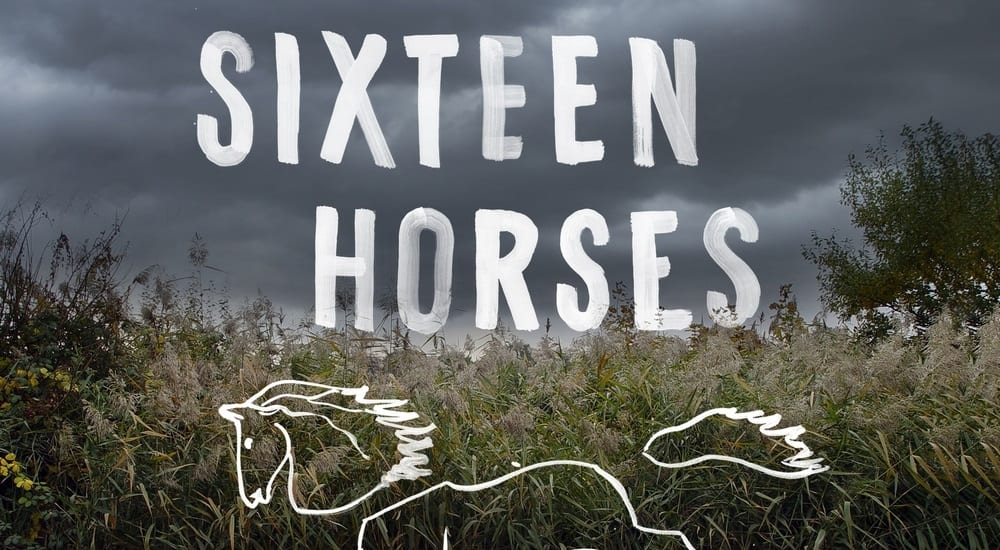 the cover for Greg Buchanan's novel Sixteen Horses, fearing a field on a stormy day. an outline of a horse is overlaid