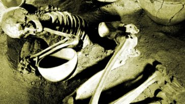 A skeleton lies curled up on a sandy ground.