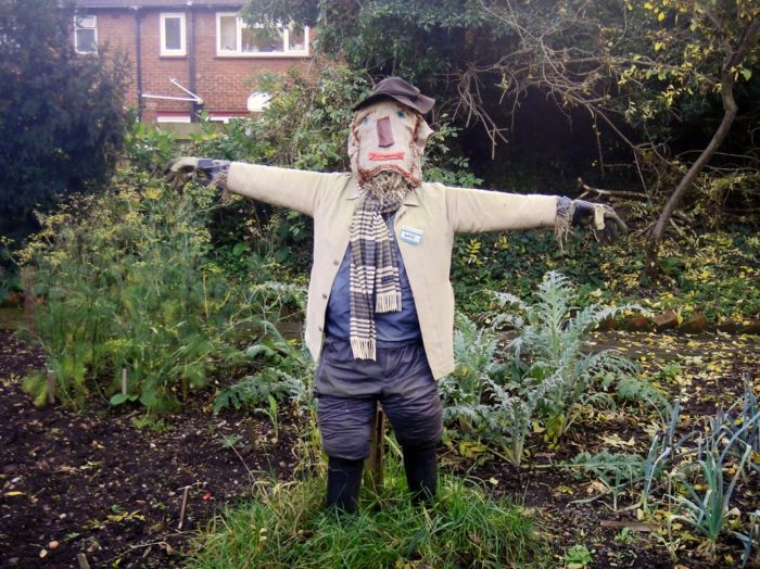 A lone scarecrow stands erect in a yard, ready to scare off crows, or the supernatural